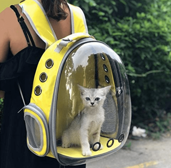 Cat Carrier Backpack Astronaut India-min