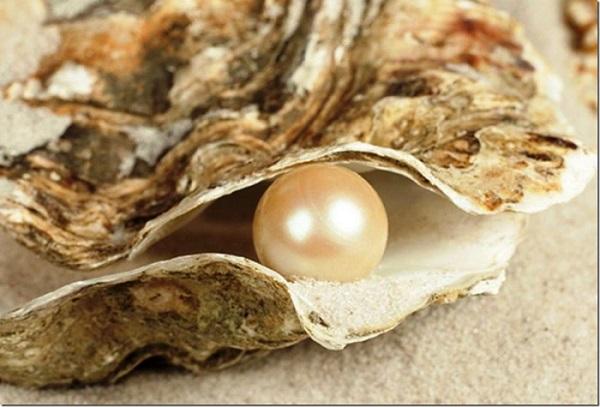 Andaman Island Souvenir Pearls